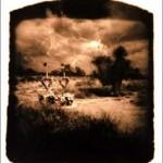 skull-pinhole-camera-scary-photography-2