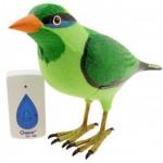 bird-doorbell
