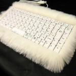 cool-keyboard-cat-fur