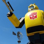 bumblebee-transformer-real1