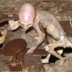 weird alien baby