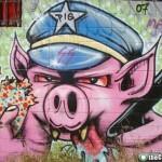 street art pigs