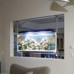 Hanging Aquarium3