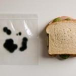 anti theft sandwich bags