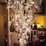 weird inverted tree