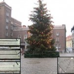 world riga tree
