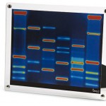 dna art frame