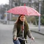 utility umbrella bike