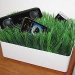 Grassy Lawn Charging Station 1