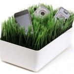 Grassy Lawn Charging Station
