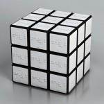 color braille rubik cube1
