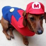 mario puppy costume