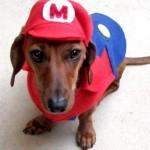 mario puppy costume frontal