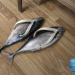 smelly fish slippers design