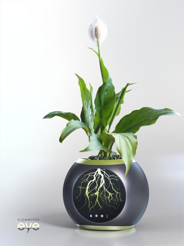"""""""EYE"""" Flower Pot (2)"""