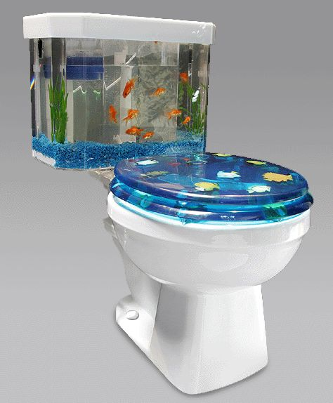 Fish Tank Toilet
