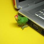 Parrot-USB-Flash Drive