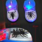 5 tarantula mouse