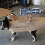 starship enterprise costume for dogs