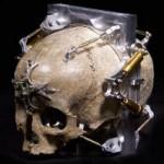 Skull Pinhole Camera