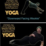 downward facing wookie
