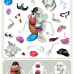 mr potato head anatomy 1
