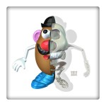 mr potato head anatomy