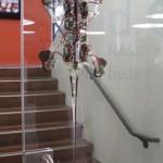 gecko robot innovation