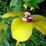 super mario bros bees figures images