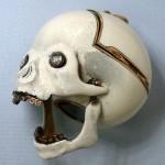 Skull Pocket Watch 7