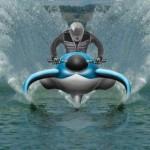 dolphin watercraft