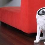 headless dog speaker design image thumb