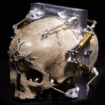 Cool_Skull_Gadgets_3