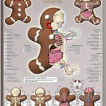 Gingerbread man anatomy design image