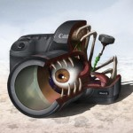 canon 5d mark ii anatomy design image