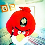 angry birds game collection costume designs 7