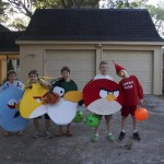 angry birds game collection costume designs 8