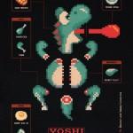 Yoshi Meat Diagram