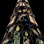 beautiful christmas trees 10