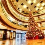 beautiful christmas trees 12