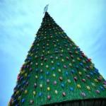 beautiful christmas trees 121
