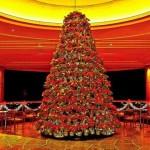 beautiful christmas trees 16