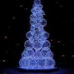 beautiful christmas trees 5