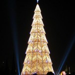 beautiful christmas trees 9