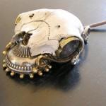 best skull gadgets of 2010
