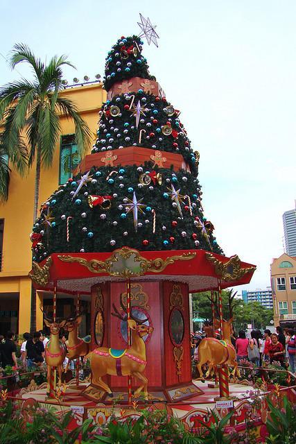 christmas trees reindeer carousel
