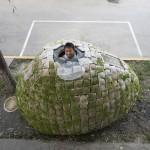 egghouse1.jpg