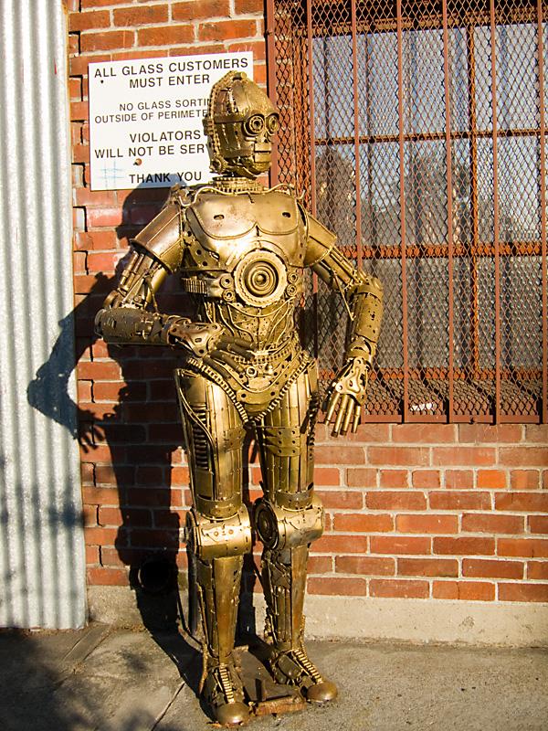 C-3PO ourangoutan