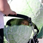 Crazy_Baby_Strollers_and_Carriages_20_5
