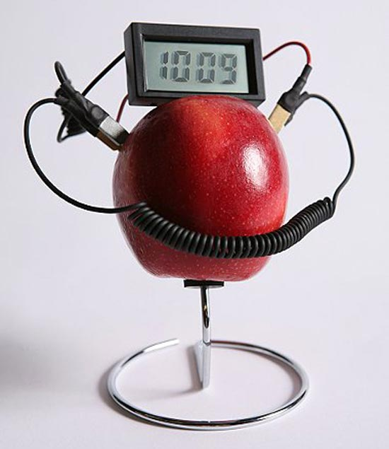 Fruit Powered Clock 2